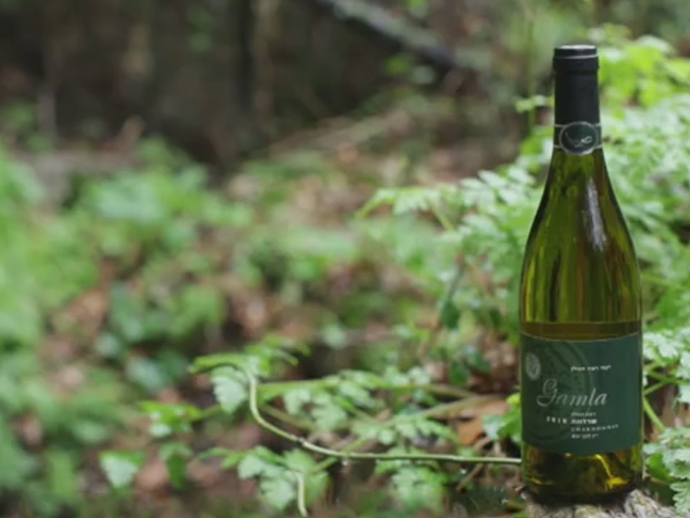 Ramat HaGolan Winery